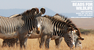 Beads For Wildlife campaign sign with image of three black and white striped zebras.