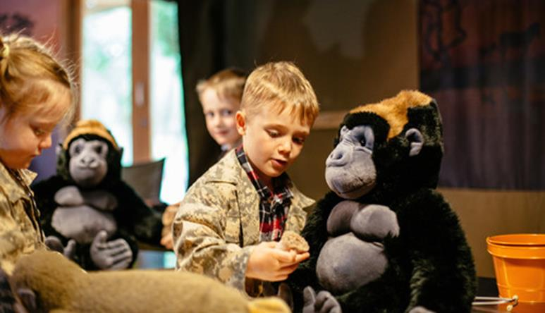 young children dressed up as rangers, checking the health of some plush gorilla toys