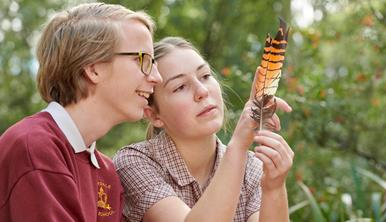 Two students examine a orange and black striped feather Healesville Sanctuary.