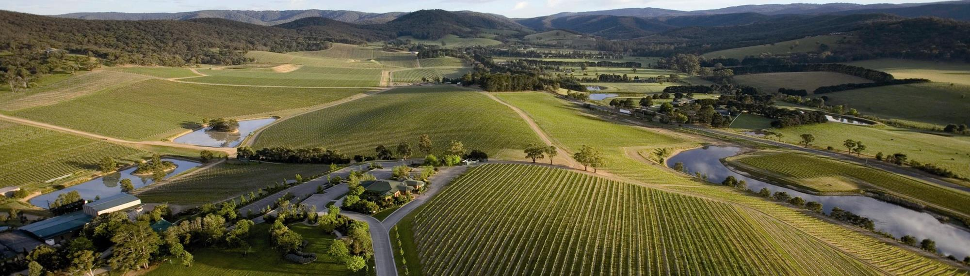 Aerial view of the Yarra Valley Victoria. Looking out toward farms with green paddocks, small lakes with dark green treed mountains in the horizon.