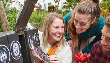 Two women laughing and a man participating in Race Around The Zoo retrieve clue cards from wooden boxes with animal faces painted on the front.