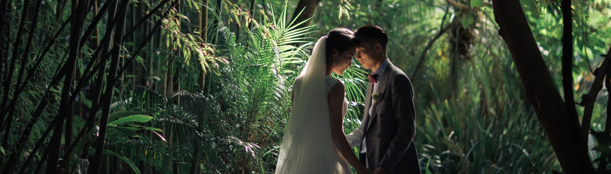 Bride and groom gazing into each others eyes while holding hands. Set in a lush rain forest setting.