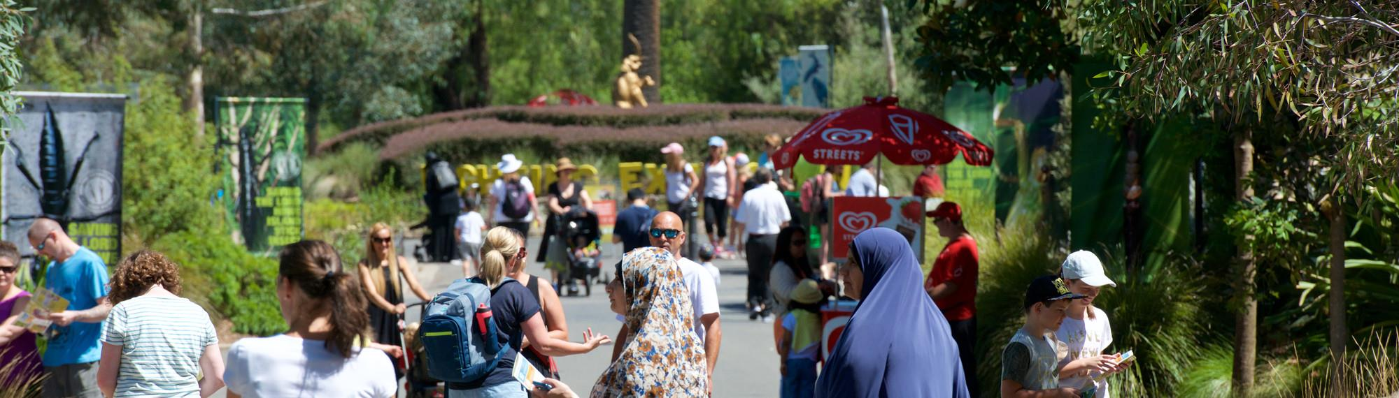 Zoo Visitors Walking Down Main Drive At Melbourne Zoo.