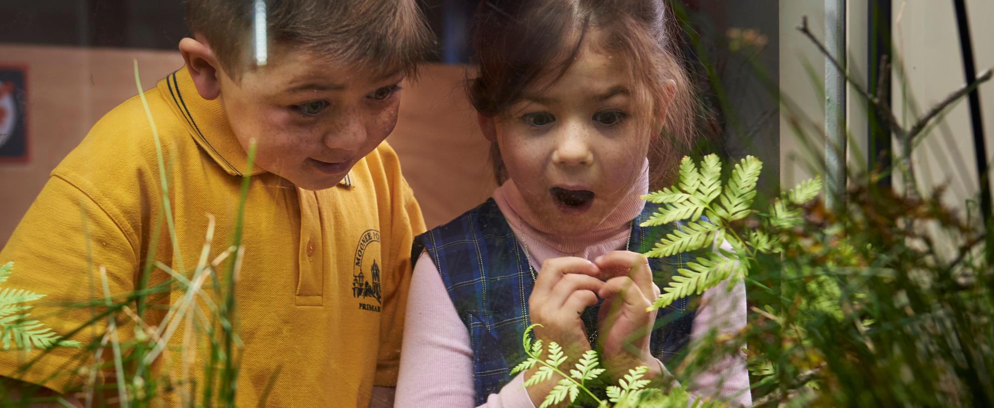 Two Students Look in awe at Southern Corroboree Frogs Melbourne Zoo.